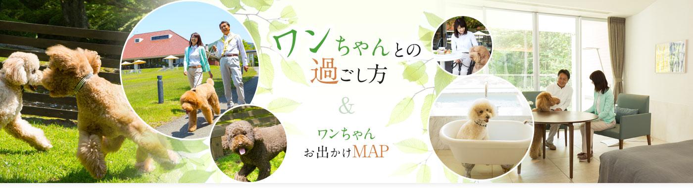 ワンちゃんとの過ごし方&ワンちゃんお出かけMAP